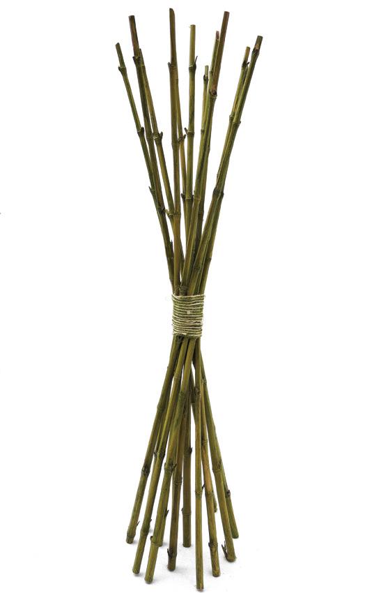 Atado Canas De Bambu X 11copy Belinda Flowers - Palos-de-bambu